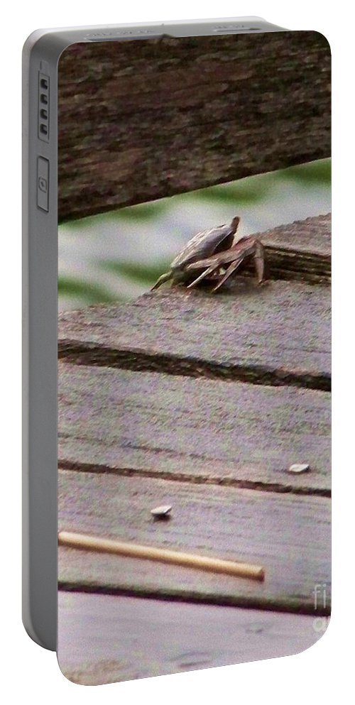 Crab Portable Battery Charger featuring the photograph Crab On The Pier by Chuck Hicks
