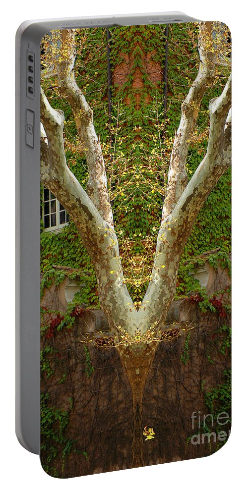 Portable Battery Charger featuring the photograph Creation 422 by Mike Nellums