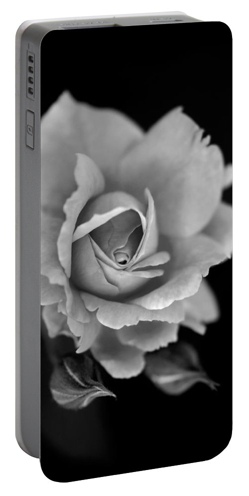 Rose Portable Battery Charger featuring the photograph Creatively Colorless by Teri Schuster
