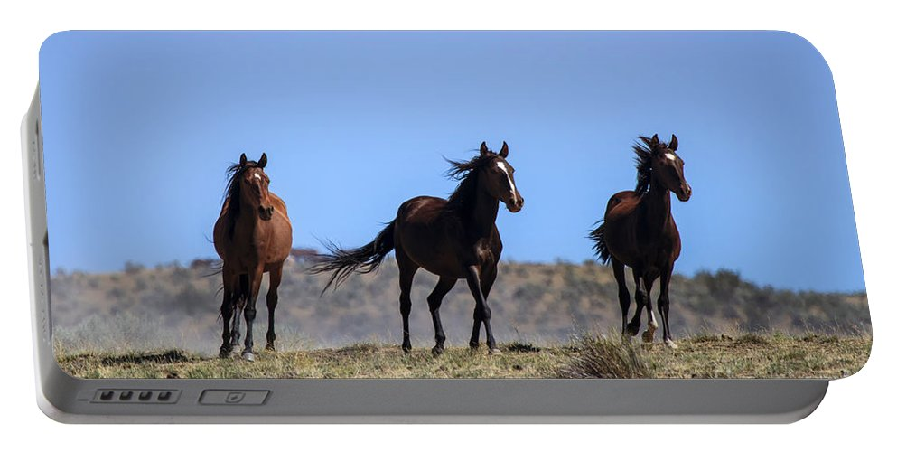 Mustangs Portable Battery Charger featuring the photograph Cresting The Ridge by Mike Dawson