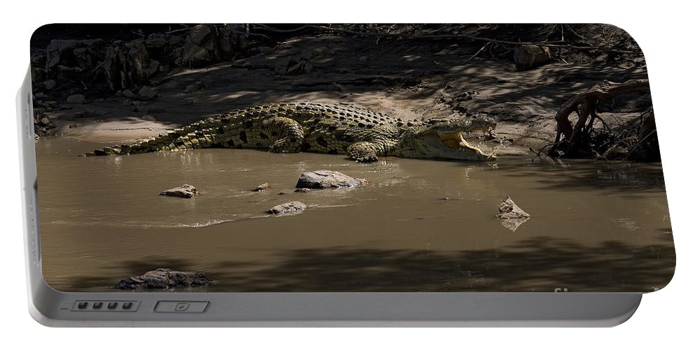 Crocodylus Niloticus Niloticus Portable Battery Charger featuring the photograph Crocodile  #7282 by J L Woody Wooden
