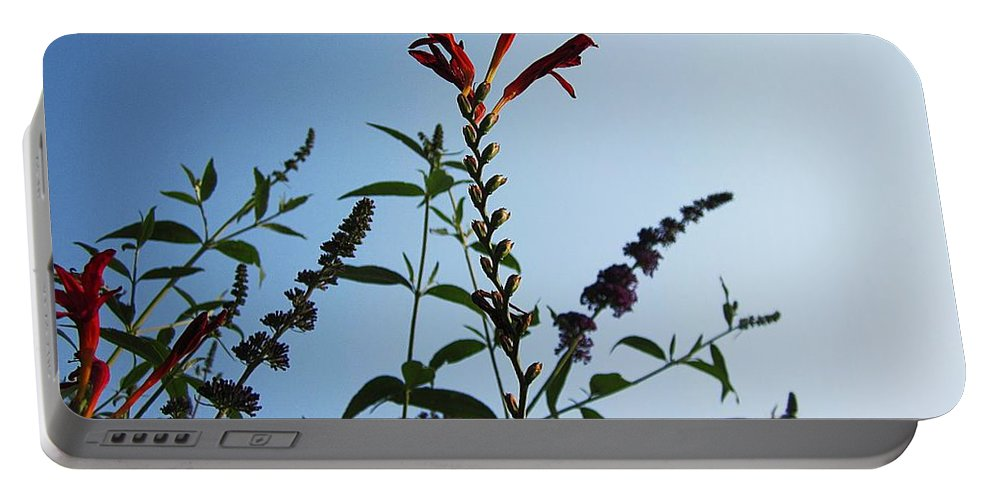 Crocosmia Lucifer Portable Battery Charger featuring the photograph Crocosmia Sky by MTBobbins Photography