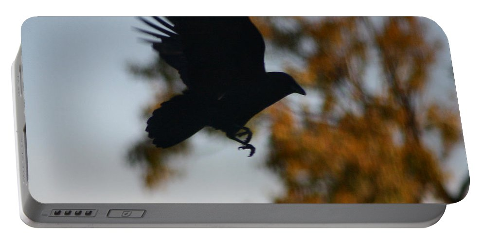 Flying Crow Portable Battery Charger featuring the photograph Crow In Flight 2 by Gothicrow Images