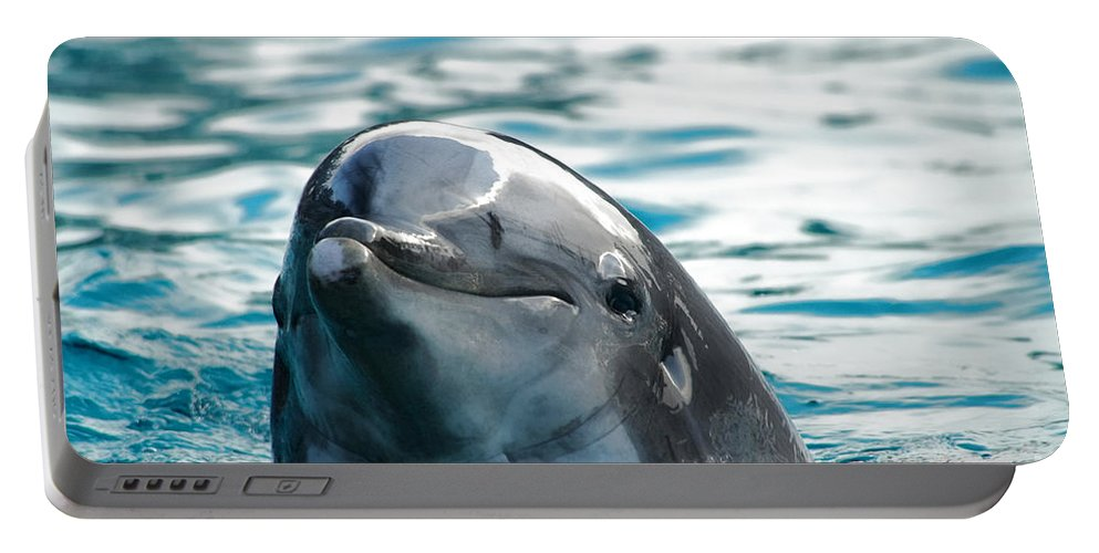 Dolphin Portable Battery Charger featuring the photograph Curious Dolphin by Mariola Bitner
