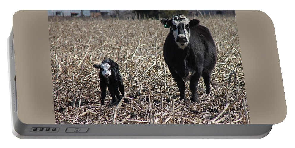 Cattle Portable Battery Charger featuring the photograph Curious Pair by Wayne Williams