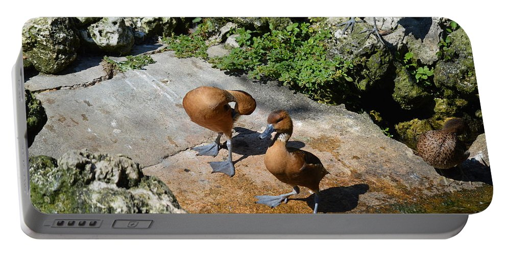 Ducks Portable Battery Charger featuring the photograph Cuties by Linda Kerkau