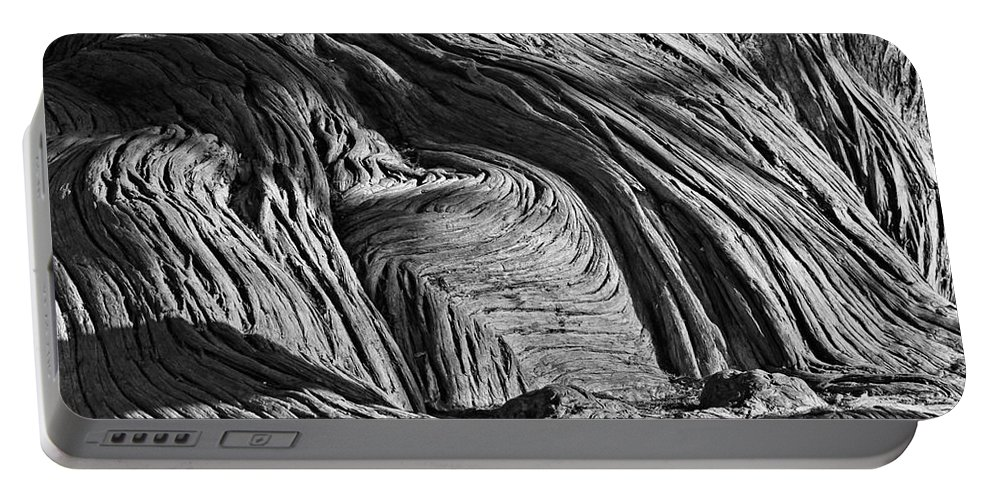Cypress Tree Portable Battery Charger featuring the photograph Cypress Tree Abstract by Gary Richards