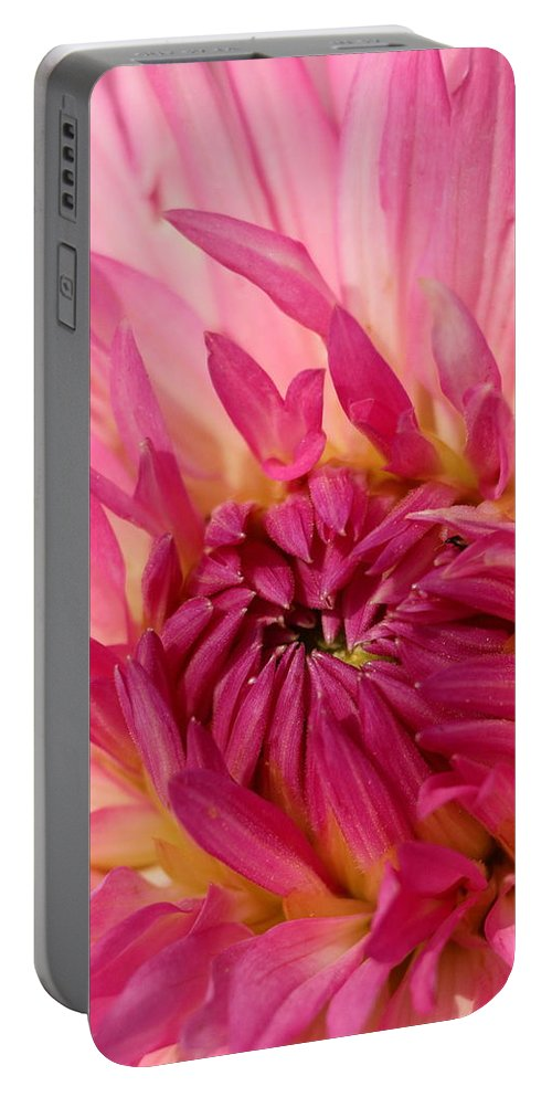 Flower Portable Battery Charger featuring the photograph Dahlia 2am-104251 by Andrew McInnes