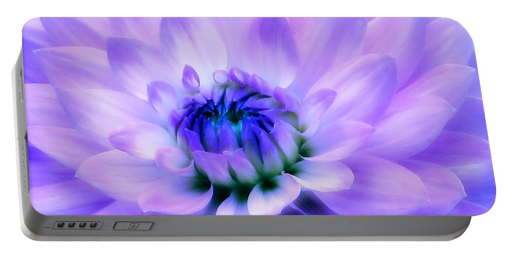 Dahlia Portable Battery Charger featuring the photograph Dahlia Dream by Rory Sagner