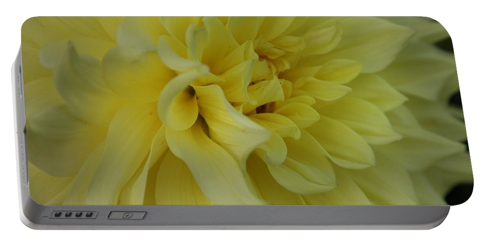 Dahlia Portable Battery Charger featuring the photograph Dahlia Macro by Christiane Schulze Art And Photography