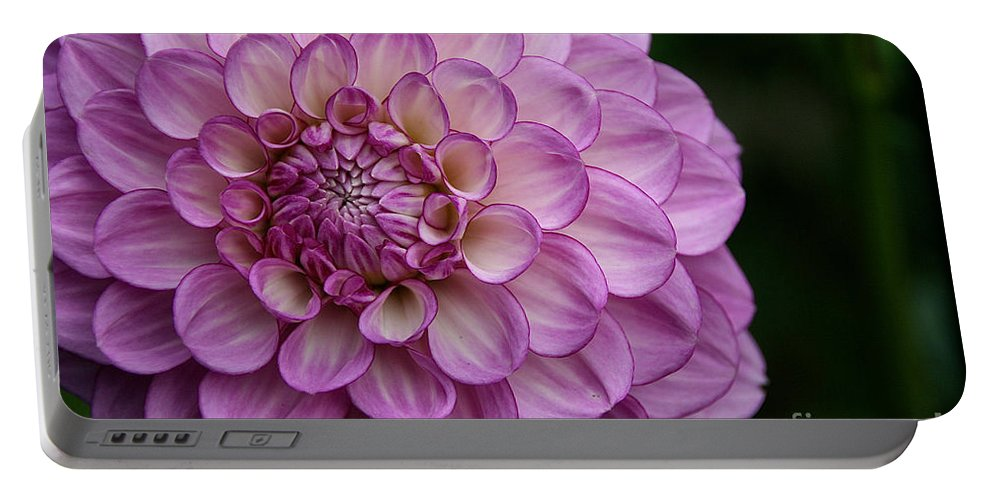 Flower Portable Battery Charger featuring the photograph Dahlia's Outta Da Blu by Susan Herber