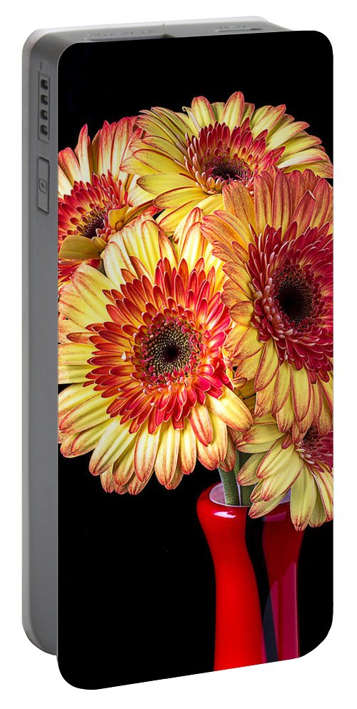 Daisy Bouquet Portable Battery Charger featuring the photograph Daisy Bouquet by Garry Gay