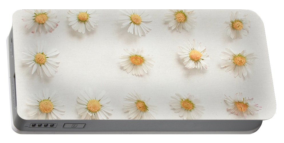 Daisies Portable Battery Charger featuring the photograph Daisy Collection by Cassia Beck