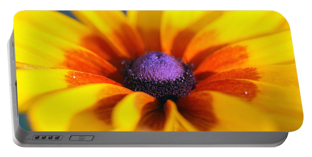 Nature Portable Battery Charger featuring the photograph Daisy by Kay Lovingood
