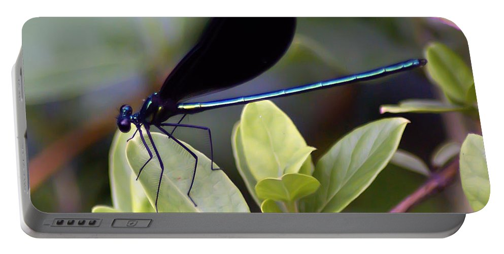 2d Portable Battery Charger featuring the photograph Damselfly by Brian Wallace