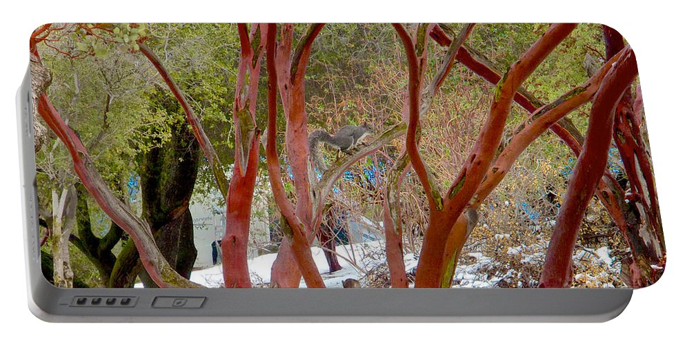 Dancing Manzanitas On The Hillside In Park Sierra Portable Battery Charger featuring the photograph Dancing Manzanitas On The Hillside In Park Sierra-california by Ruth Hager