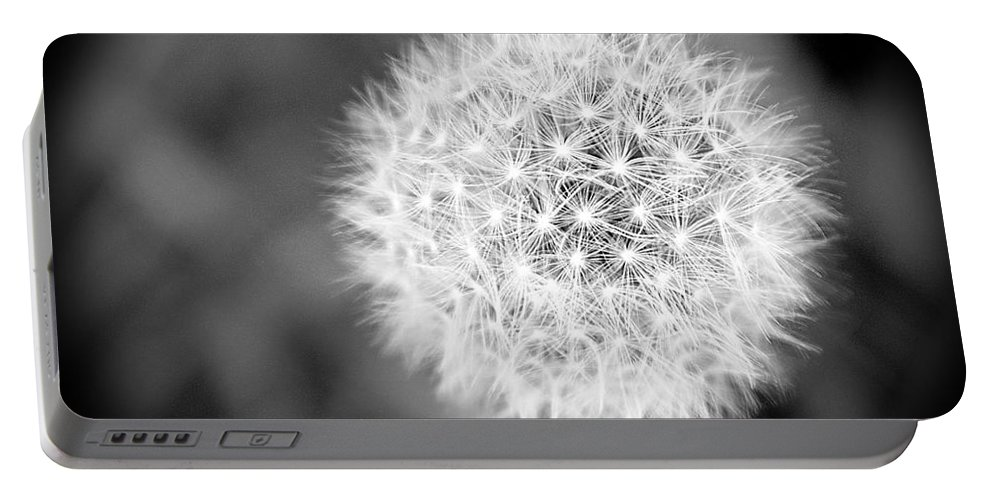 Dandelion Portable Battery Charger featuring the photograph Dandelion 2 In Black And White by Emily Kay