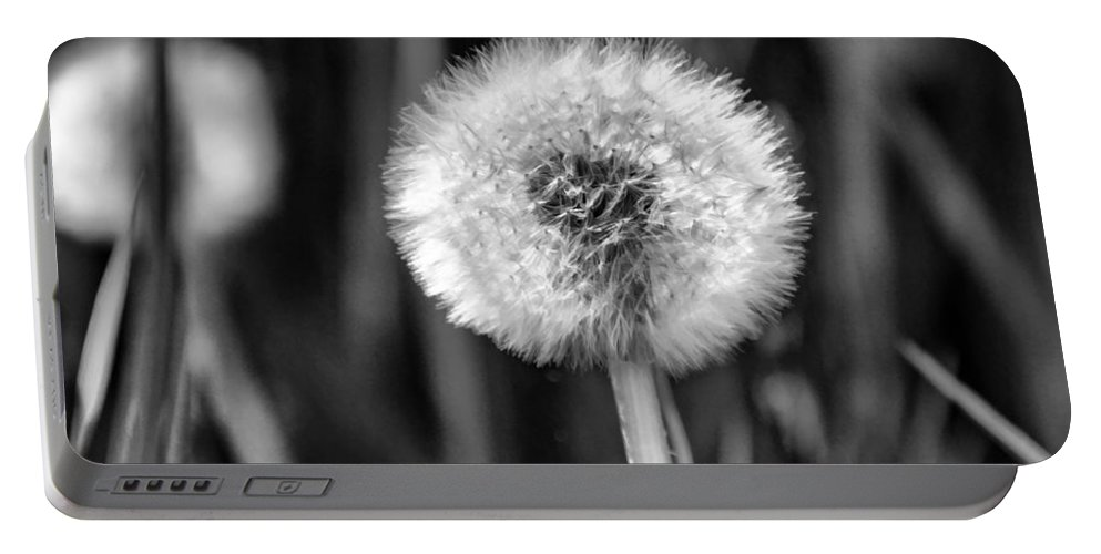 Dandelion Portable Battery Charger featuring the photograph Dandelion Fluff Black And White by Donna Doherty