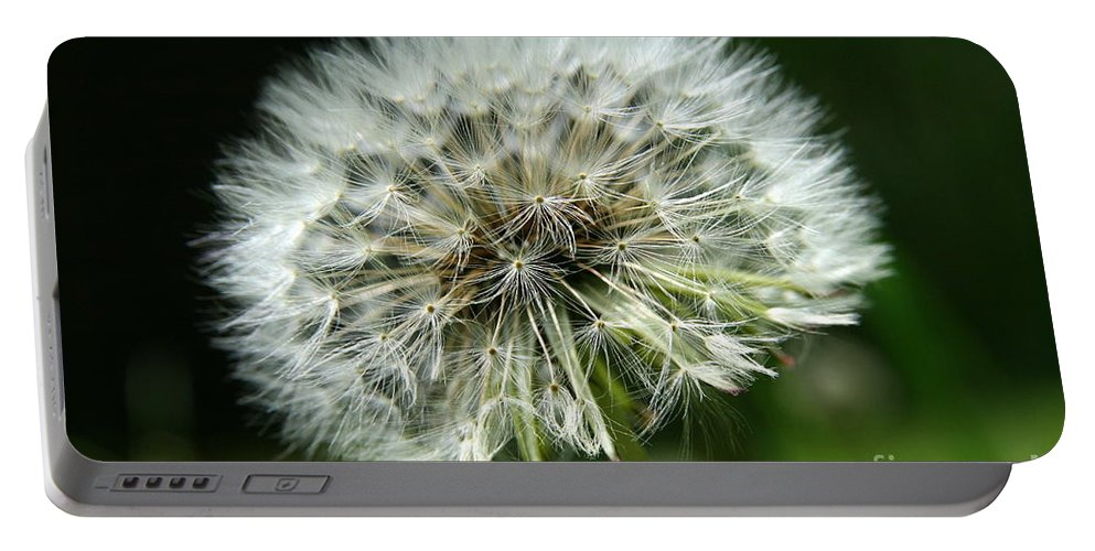 Seed Portable Battery Charger featuring the photograph Dandelion Ready by Neal Eslinger