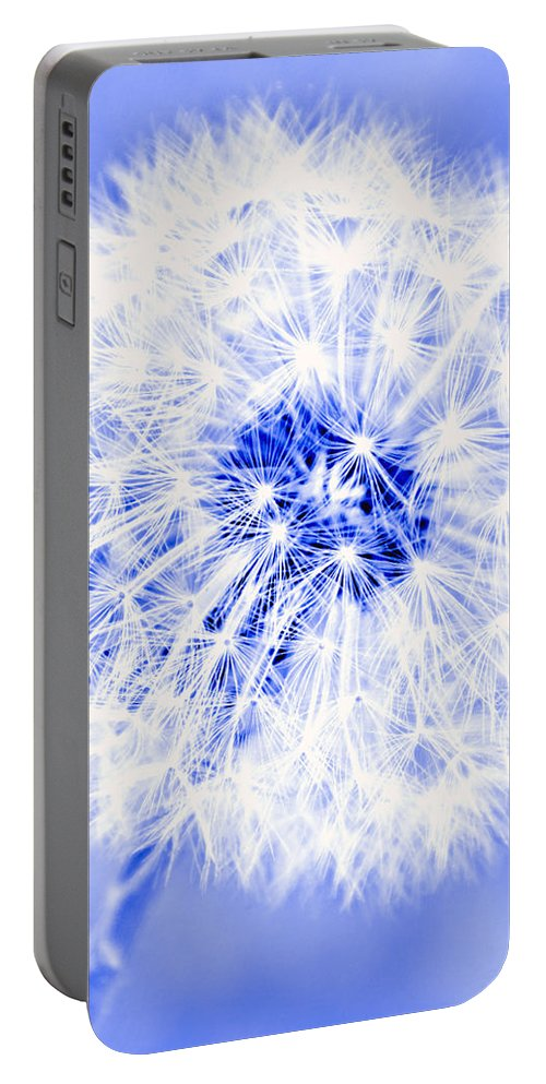Dandelion Portable Battery Charger featuring the photograph Dandy Blue by Tina Meador
