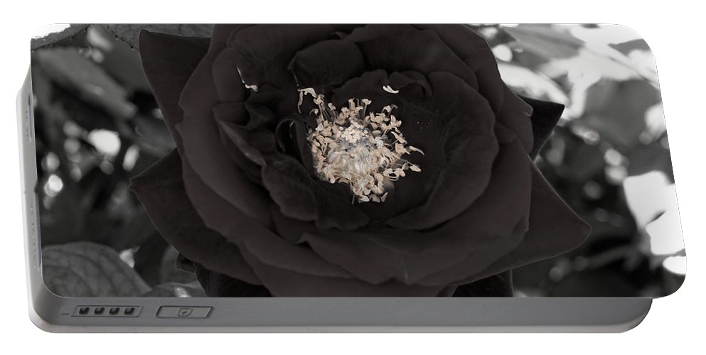 Dark Rose Portable Battery Charger featuring the photograph Dark Rose by Scott Hill