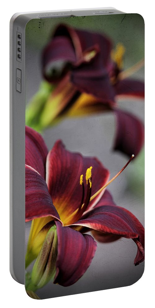 Daylily Portable Battery Charger featuring the photograph Daylilies Forever by Kathy Clark