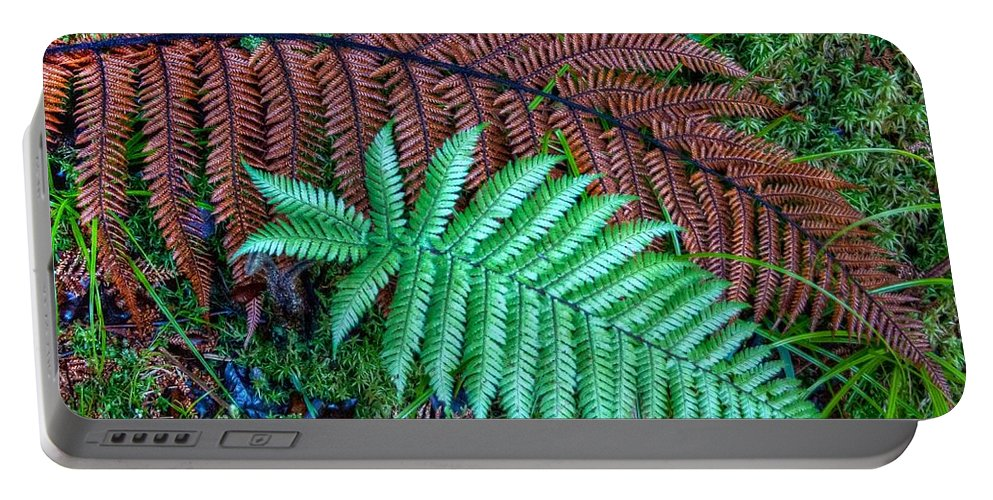 Fern Portable Battery Charger featuring the photograph Dead And Alive by Jenny Setchell