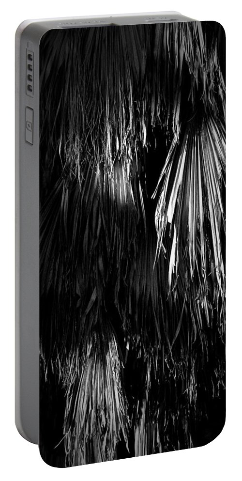 Black Portable Battery Charger featuring the photograph Dead Fronds by Phil Penne