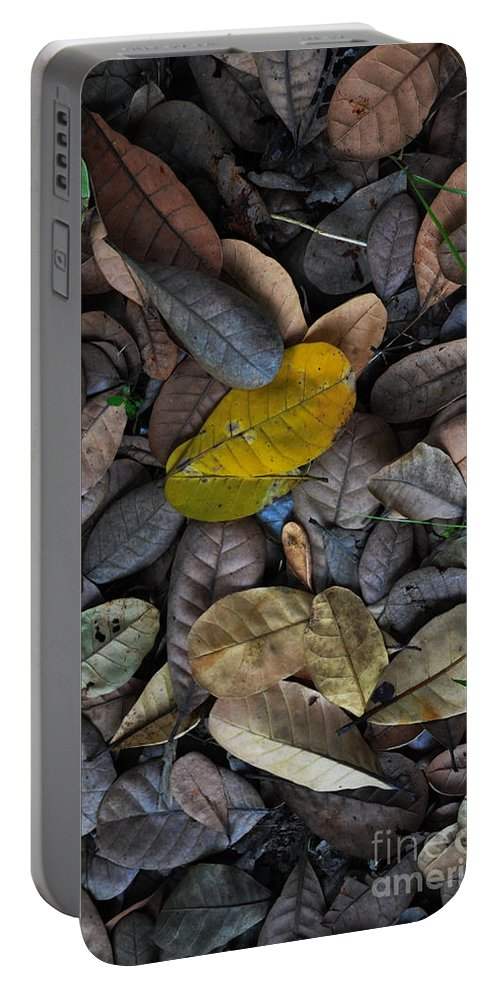Michelle Meenawong Portable Battery Charger featuring the photograph Dead Leaves by Michelle Meenawong
