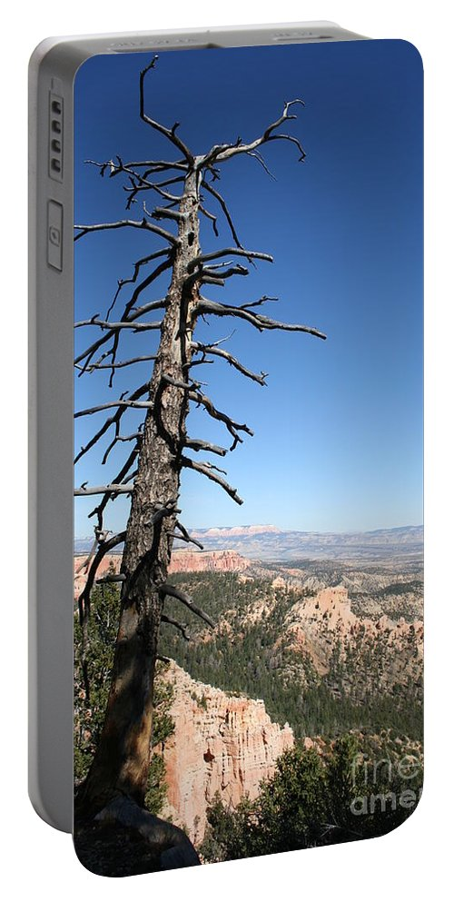 Tree Portable Battery Charger featuring the photograph Dead Tree At Bryce Canyon Overlook by Christiane Schulze Art And Photography