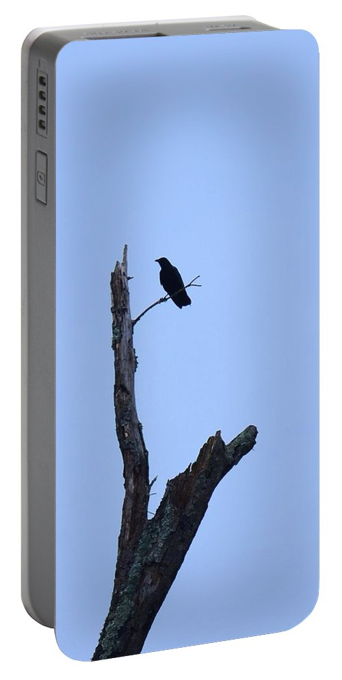 Dead Tree Crow Portable Battery Charger featuring the photograph Dead Tree Crow by Maria Urso