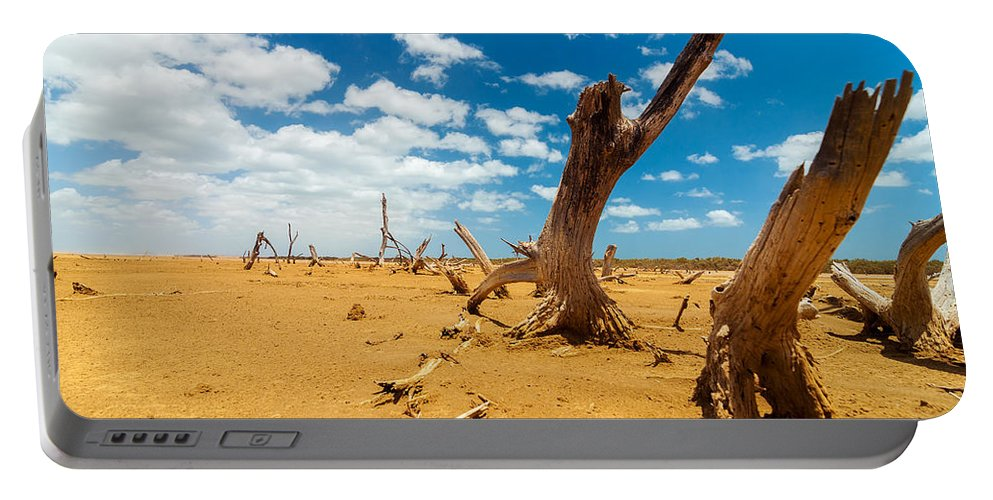 Desert Portable Battery Charger featuring the photograph Dead Trees In A Desert Wasteland by Jess Kraft