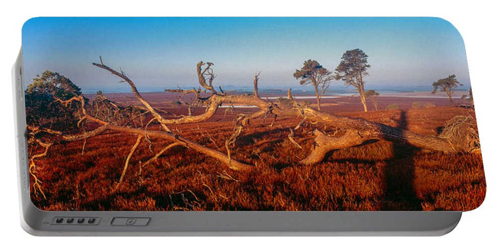 Photography Portable Battery Charger featuring the photograph Dead Trees, Southern Uplands by Panoramic Images