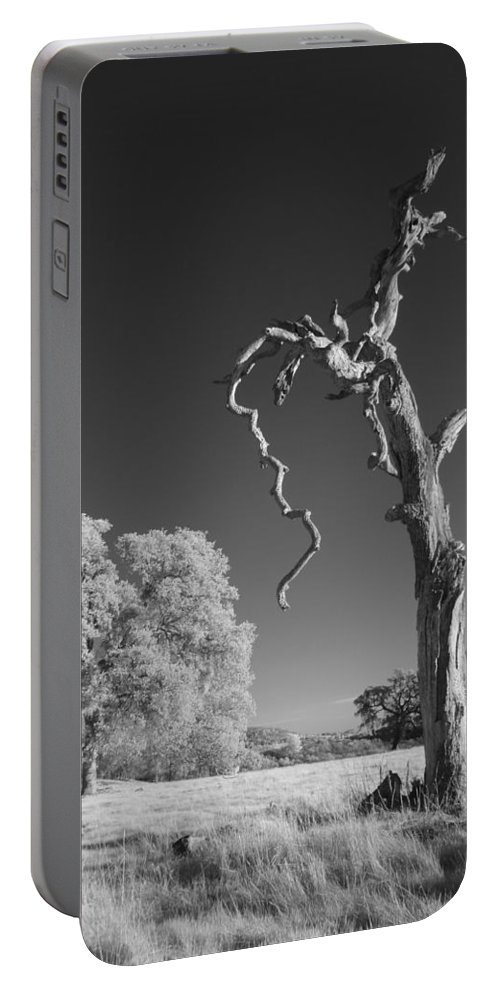 Portable Battery Charger featuring the photograph Dead Weathered by Jennifer Ann Henry