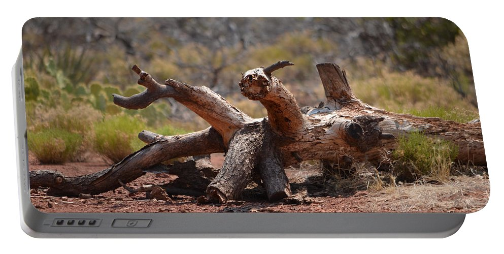 Wood Portable Battery Charger featuring the photograph Dead Wood Crawl by Deprise Brescia