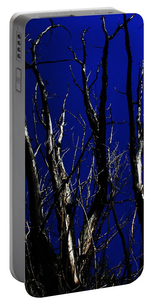 Decorator Art Portable Battery Charger featuring the photograph Deadwood Fingers by Ric Bascobert