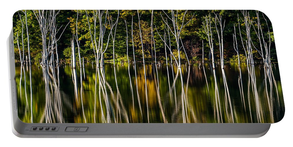 Us Portable Battery Charger featuring the photograph Deadwood by Mihai Andritoiu