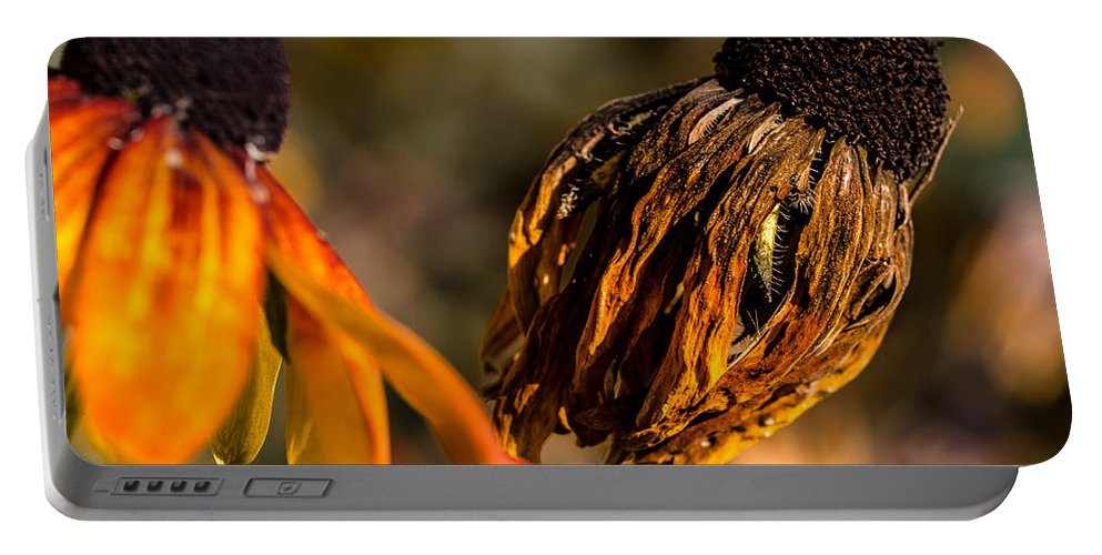 Flower Portable Battery Charger featuring the photograph Decadence by Edgar Laureano