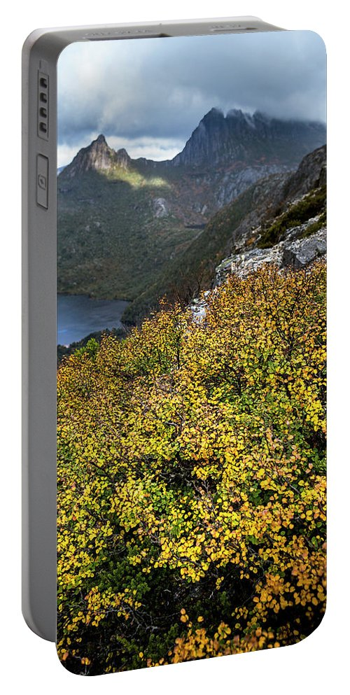 Lake St Clair National Park Portable Battery Charger featuring the photograph Deciduous Beech Or Fagus In Colour by Heath Holden