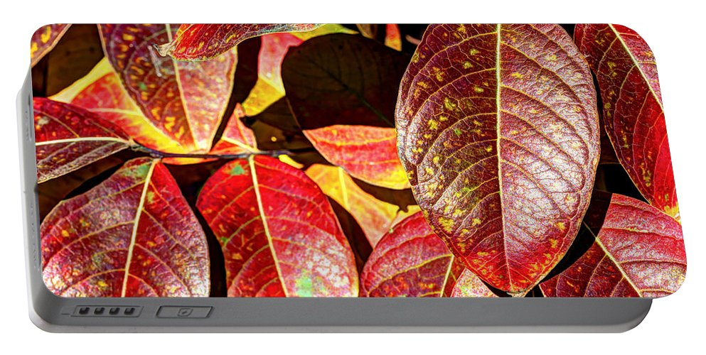 Blurred Portable Battery Charger featuring the photograph Deep Into Autumn by Heidi Smith