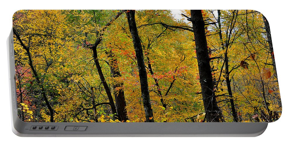 Woods Portable Battery Charger featuring the photograph Deep Woods by Todd Hostetter