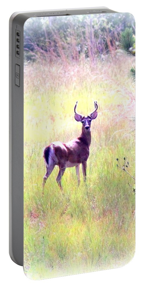 Deer - Buck - White-tailed Portable Battery Charger featuring the photograph Deer - Buck - White-tailed by Travis Truelove