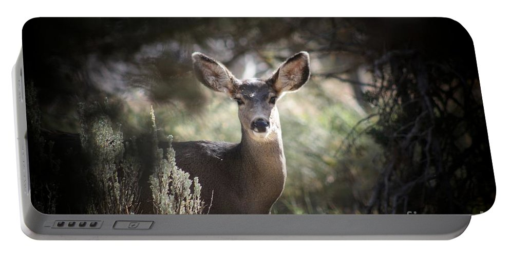 Deer Portable Battery Charger featuring the photograph Deer I by Brandi Maher
