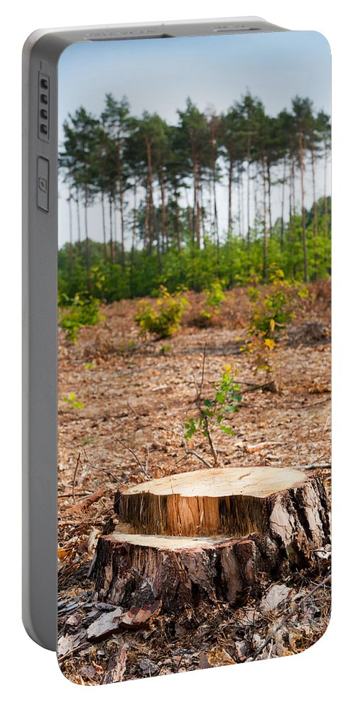 Bole Portable Battery Charger featuring the photograph Woods Logging One Stump After Deforestation by Arletta Cwalina