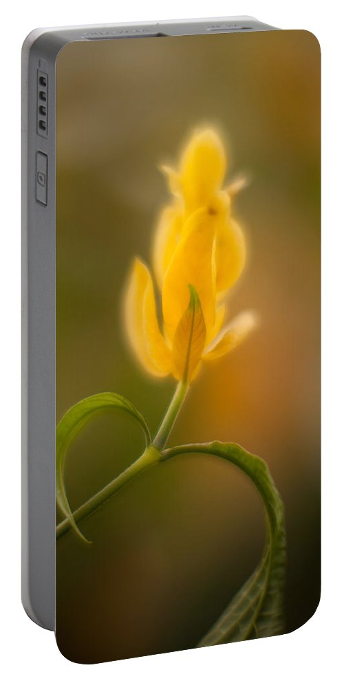 Flower Portable Battery Charger featuring the photograph Delicate Fountain Of Gold by Mike Reid