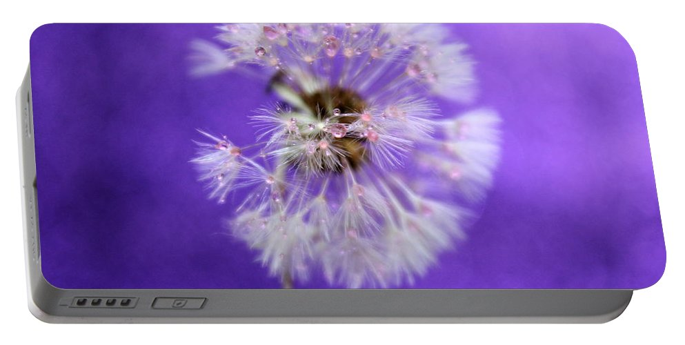 Dandelion Portable Battery Charger featuring the photograph Delicate Wish by Krissy Katsimbras
