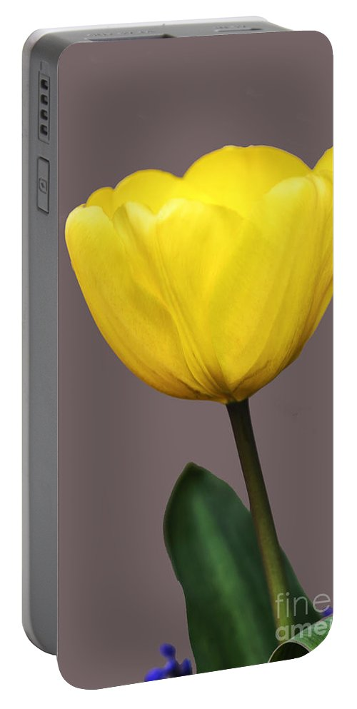 Texture Portable Battery Charger featuring the photograph Delicate Yellow by Elvis Vaughn