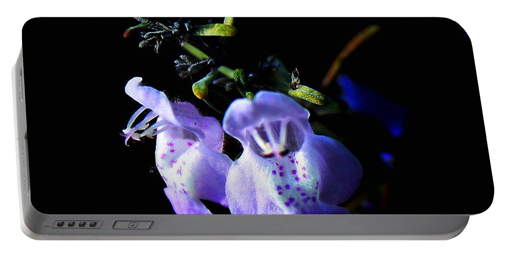 Flower Portable Battery Charger featuring the photograph Delicately Purple by Debra Forand