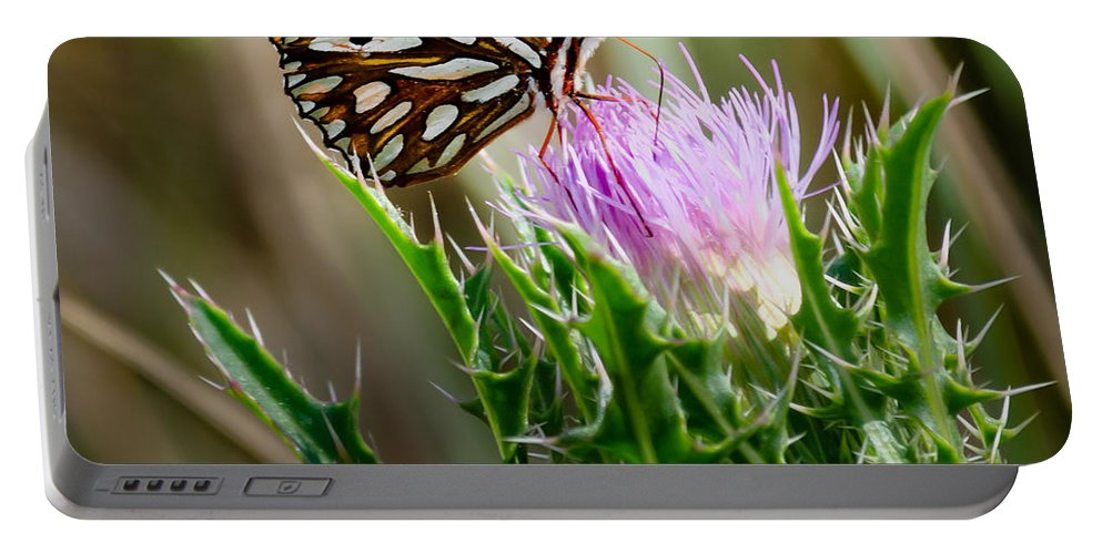 Florida Portable Battery Charger featuring the photograph Delicious by Georgette Grossman