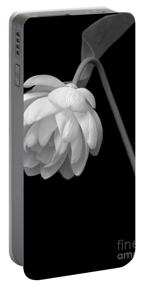 Art Portable Battery Charger featuring the photograph Demure Lotus by Sabrina L Ryan